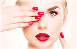 皮膚理論、メイクアップの基礎知識、顔分析方法